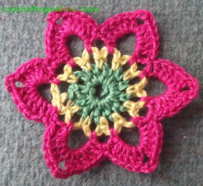 Hexagon Motif Narcissus  crochet stitches